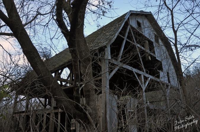 The Beauty in the Broken Barn