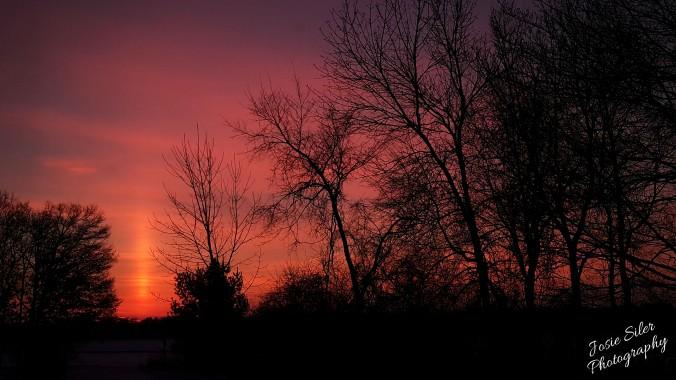 The Courageous Sunrise